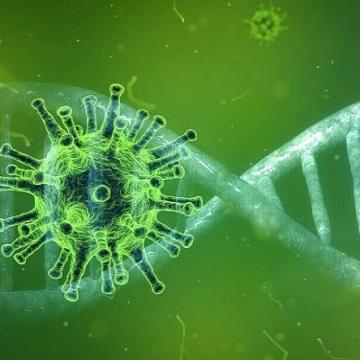 19 са новодиагностицираните лица с коронавирусна инфекция в Кюстендилска област