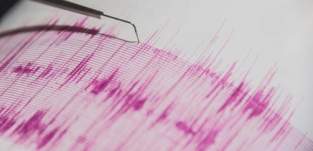 Слабо земетресение край Бобов дол