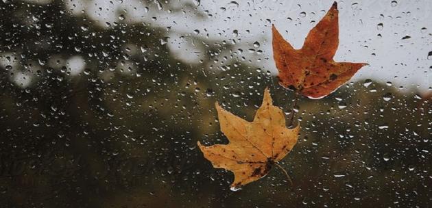 И днес - дъждовно и мъгливо време