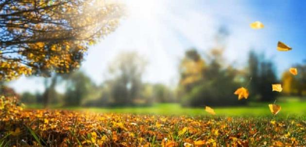 Новата седмица идва с топъл и слънчев ден