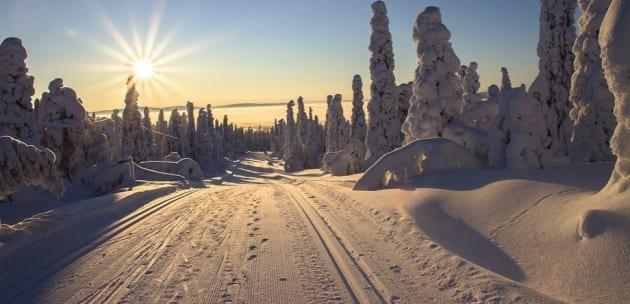 След студената утрин, дневните температури ще се повишат