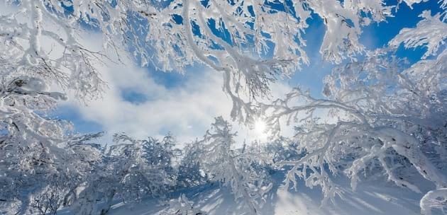 Днес ще преобладава слънчево време, с максимални температури между 0 и 5 градуса