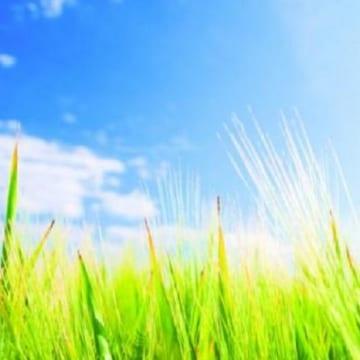 Слънчево, с максимални температури между 20 и 25 градуса