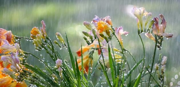 ВРЕМЕТО: Предстои спад на температурите и валежи придружени с гръмотевици